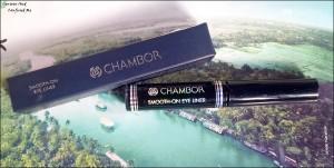Chambor Smooth On Liquid Eyeliner Black swatch review, Chambor matte eyeliner review swatch, Chambor eyeliner review, Matte eyeliner in India review, Matte eyeliner under 1000